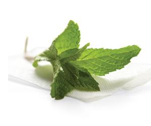 Les propriétés médicinales de la menthe poivrée